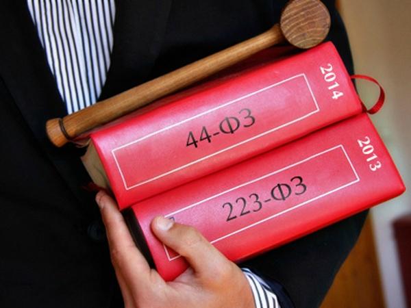 В чем разница между 223 и 44 ФЗ